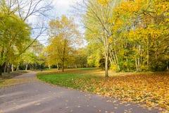 Bahn in einer lokalen Park Herbstzeit Lizenzfreies Stockfoto