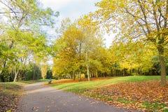 Bahn in einer lokalen Park Herbstzeit Stockfoto
