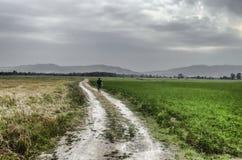 Bahn herauf den Hügel gegen den Himmel Mann lief weg Mann, der auf Straße geht Feld mit grünem und gelbem Gras azerbaijan Lizenzfreies Stockfoto