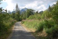 Bahn im Bereich von See Strbske Pleso im Sommer, Slowakei Lizenzfreies Stockbild