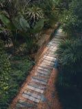 Bahn im grünen Garten Lizenzfreies Stockfoto