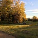 Bahn mit Herbstbäumen und -felsen Stockbilder