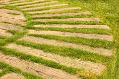 Bahn mit natürlichem grünem Gras Lizenzfreies Stockfoto