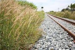 Bahn- und grasartig vom Gras lizenzfreie stockfotos