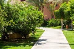 Bahn unter tropischen Anlagen und Häusern Hurghada Lizenzfreies Stockfoto