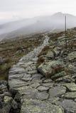 Bahn untere tatra Berge Stockbilder