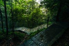 Bahn in Zhangjiajie-Staatsangehörigem Forest Park stockbild