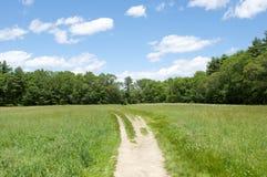 Bahn zu den blauen Himmeln und zur grünen Wiese Lizenzfreie Stockfotos