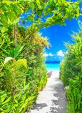 Bahn zum schönen Strand stockbild