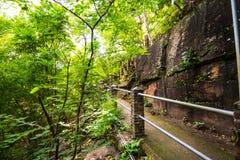 Bahn zwischen Felsen und Wald lizenzfreies stockbild