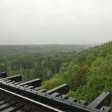 Bahnen über freiem Wald stockbild