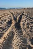 Bahnen auf dem Sand lizenzfreies stockbild