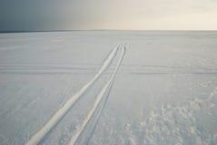 Bahnen auf gefrorenem snowcovered See Lizenzfreie Stockfotografie
