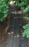 Bahnen durch Treelines Stockfotografie