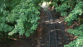 Bahnen durch Treelines von oben Stockbilder
