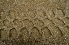 Bahnen im Sand Stockbilder