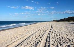 Bahnen im Sand - Perspektive von Reifenbahnen entlang einem leeren Strand, der über dem Horizont verschwindet stockfotos
