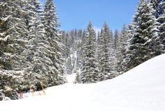 Bahnen im Schnee Stockfotografie