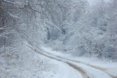 Bahnen im Schnee Stockbild