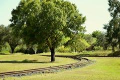 Bahngleis um einen Baum Stockbild