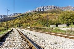Bahngleise im Berg Stockfotografie