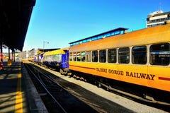 Bahnhof Neuseelands, Dunedin Stockfotografie