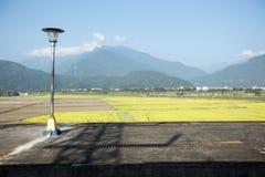 Bahnhofsplattform von Reisfeldern und -berg stockfotografie