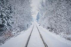 Bahnlinien Winterszene und ein Rotwild Lizenzfreie Stockfotos