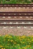 Bahnschienen und Lagerschwellen liegen aus den Grund vor dem hintergrund des gelben bl?henden L?wenzahns stockbild