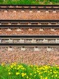 Bahnschienen und Lagerschwellen liegen aus den Grund vor dem hintergrund des gelben bl?henden L?wenzahns lizenzfreies stockfoto
