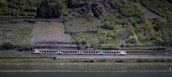 Bahnstrecke entlang den Weinbergen auf dem Rhein lizenzfreie stockfotos