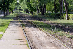 Bahnstrecken in der üppigen Waldfläche des Stadtbestimmungsortes Stockbilder