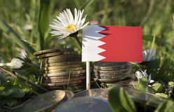 Bahrain flag with stack of money coins with grass stock images