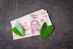 100 Bahtbanknoten auf dem Tisch und Blattgrün Herzgrün Lizenzfreie Stockfotos