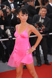 Bai Ling Royalty Free Stock Photos