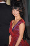 Bai Ling Royalty Free Stock Photo