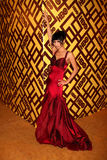 Bai Ling Royalty Free Stock Photo