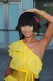 Bai Ling Stock Photography