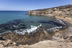 Baia California del sud dell'aliotide Immagine Stock