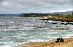 Baia California di Monterey dei subaquei Immagini Stock Libere da Diritti