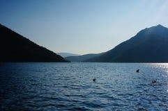 Baia con le montagne Immagine Stock