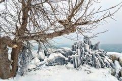 Baia congelata di Ashbridges a Toronto Fotografia Stock Libera da Diritti