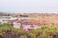 Baia degli squali, Oahu HI Fotografia Stock Libera da Diritti