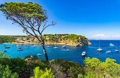 Baia del caglio dei portali con gli yacht, costa Spagna del mar Mediterraneo dell'isola di Maiorca fotografie stock libere da diritti