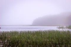 Baia del lago Fotografie Stock Libere da Diritti