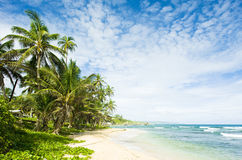 Baia del Martin, Barbados Immagini Stock
