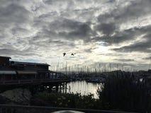 Baia del Monterey Fotografia Stock