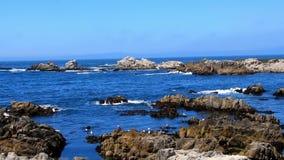 Baia del Monterey stock footage