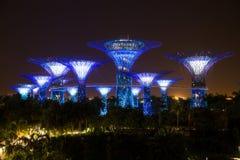 BAIA del PORTICCIOLO, SINGAPORE - 3 giugno 2016: Grande giardino dell'albero dalla baia Li Fotografia Stock