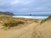 Baia del Sandfly durante il tempo nuvoloso di inverno, vicino a Dunedin, penisola di Otago, isola del sud, Nuova Zelanda immagine stock libera da diritti